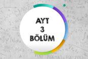 AYT 3